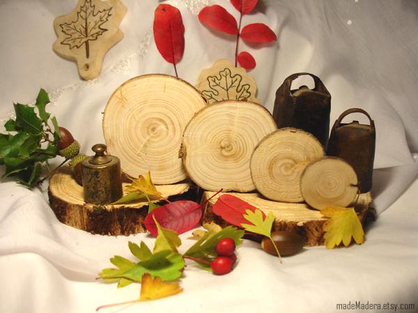 rodajas de madera, tree slices, wood slices